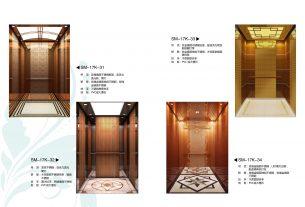 canny exclusive cabin design elevator p4 | Swiftbd